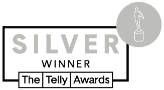 Silver Telly Badge